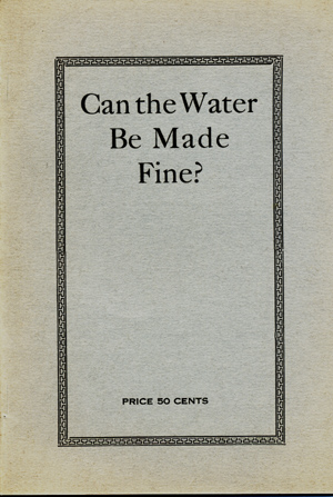 Can the Water Be Made Fine? Southern Politics and Women. Primaries, Prohibition, the Negro Question and Remedy. William Henry Gravely.