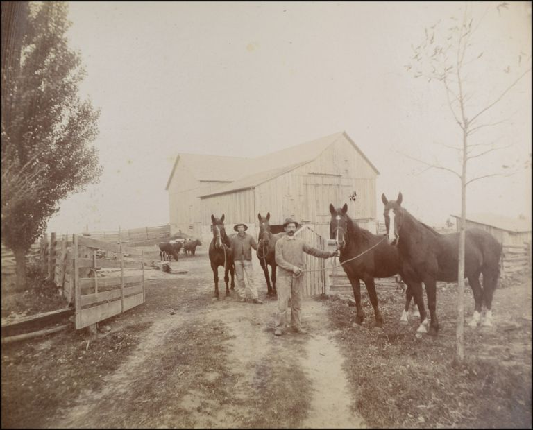 Large outdoor portrait of two men and four horses against the background of an attractive barn and farmyard. Equine Portraits, L. F. Heath.
