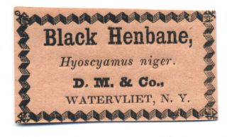 Black Henbane, Hyoscyamus niger. D. M. & Co., Watervilet, N. Y. Shaker, Labels
