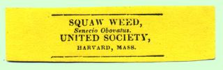 Squaw Weed, Senecio Obovatus. United Society, Harvard, Mass. Shaker, Labels