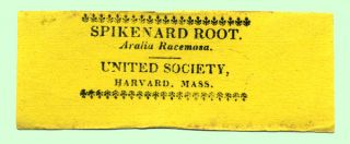 Spikenard Root. Aralia Racemosa. United Society, Harvard, Mass. Shaker, Labels